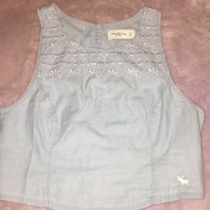 Abercrombie and Fitch deminy embroidered crop top